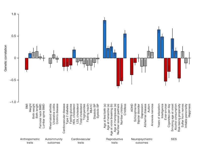 มียีน 38 ตัวที่ควบคุมเรื่องการสืบพันธุ์ของมนุษย์ และยีน CADM2 บ่งบอกว่าคุณจะมีเซ็กซ์ครั้งแรกเมื่อไหร่