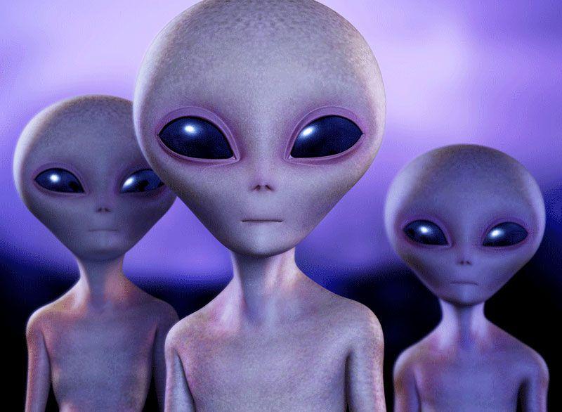 เอเลียนสีเทาที่เรารู้จักกันดีเวลาพูดถึง ET. ,heinakroon.com