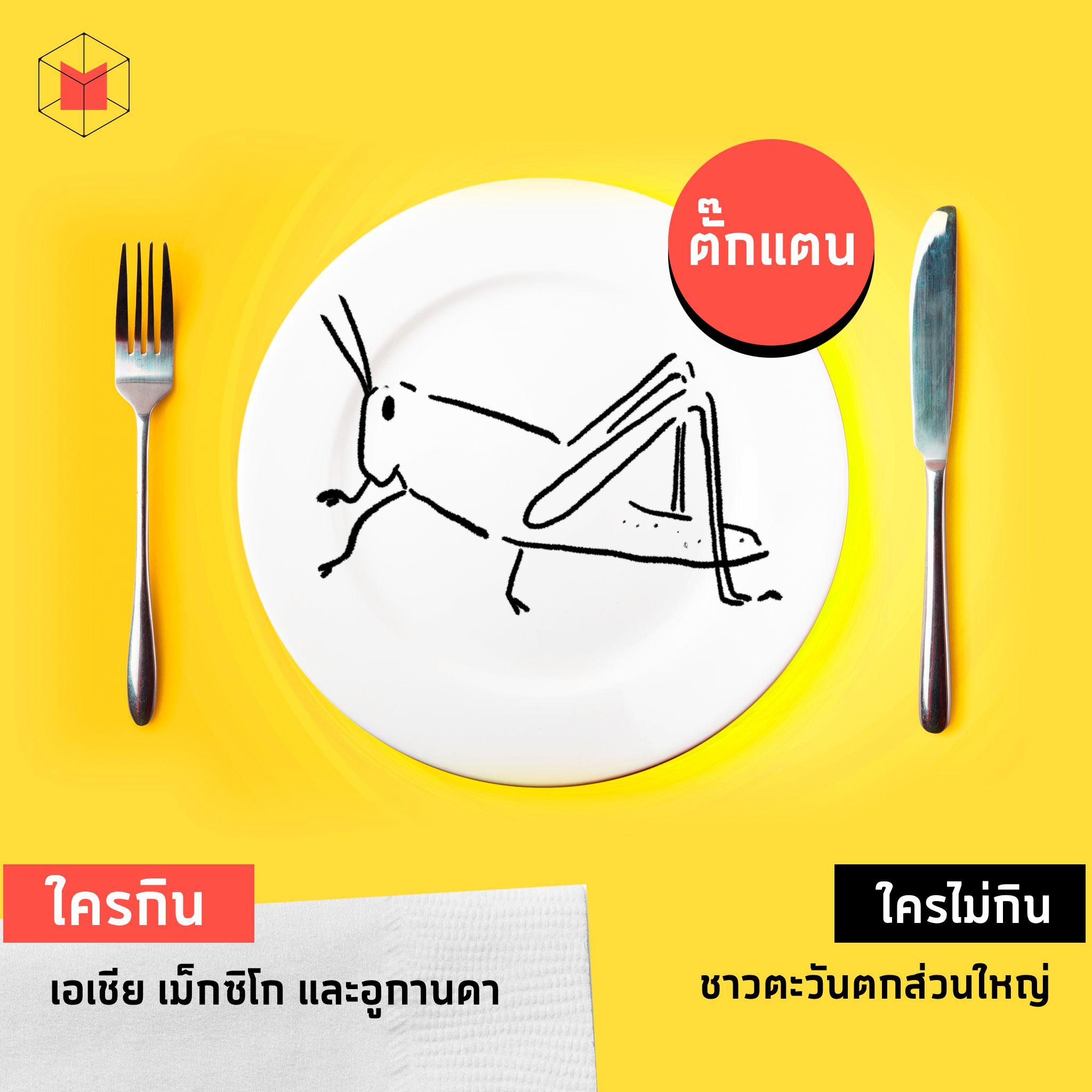 matter-food-5