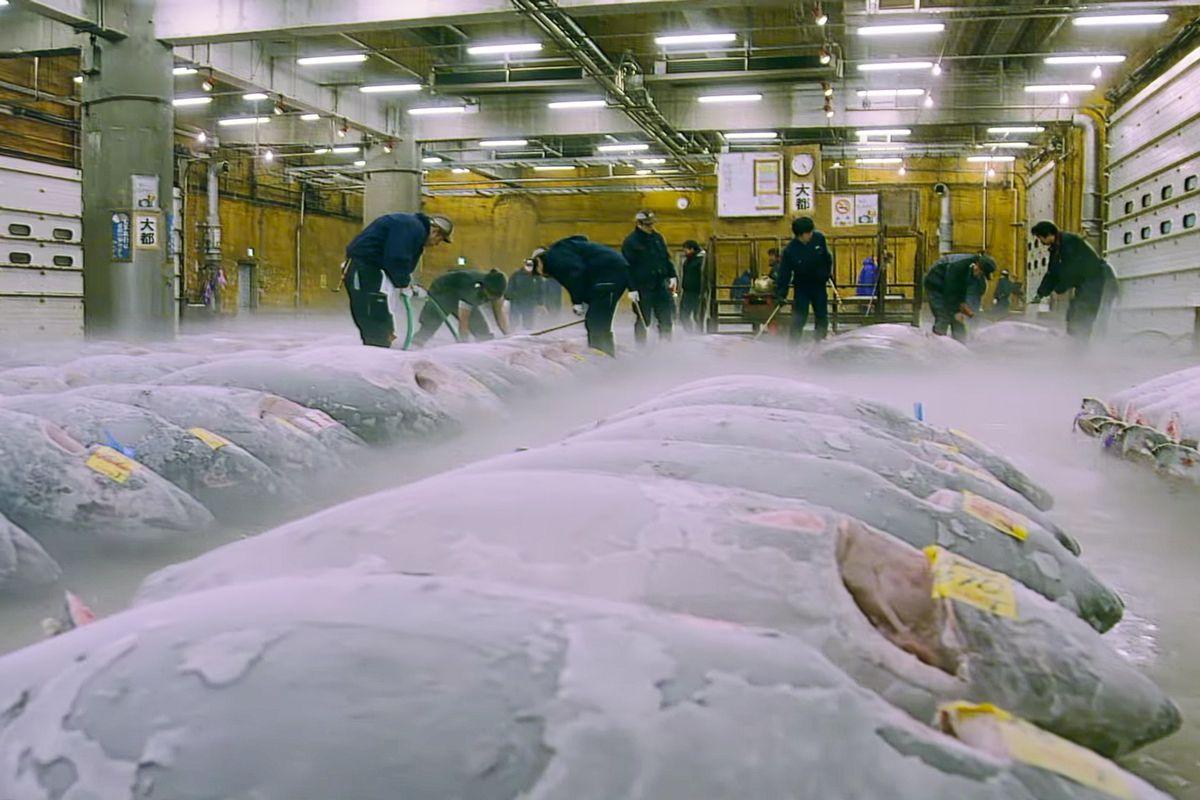 ภาพจากตัวอย่างสารคดี Tsukiji Wonderland, hypebeast.com